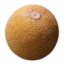 beginner vocabulary quiz on fruits